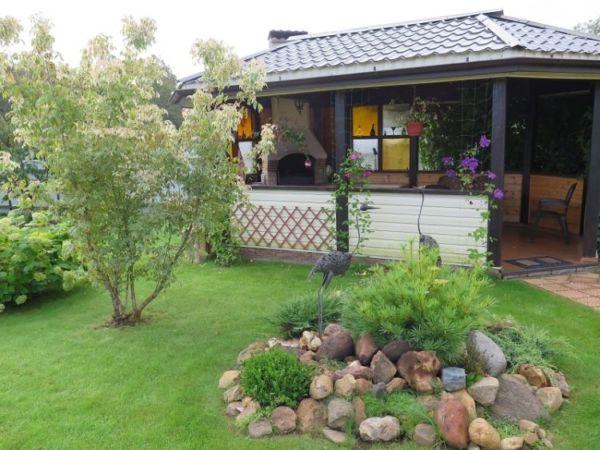 Можжевельник в саду